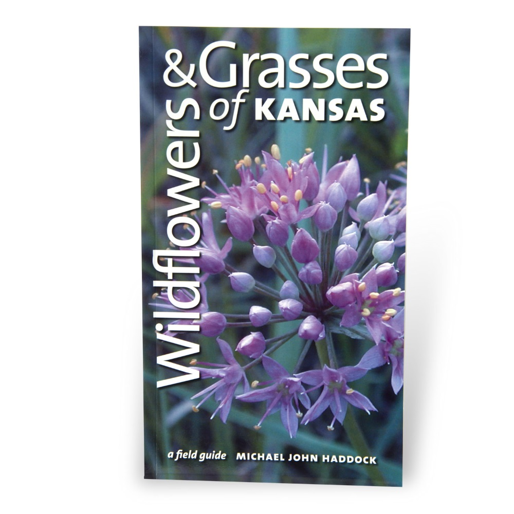 Wildflowers & Grasses of Kansas: A Field Guide