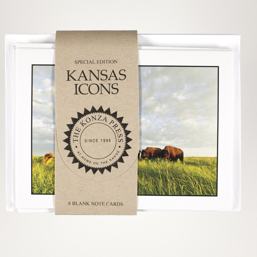Bison Note Cards,TKP426