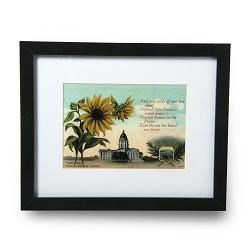 Framed Sunflower postcard