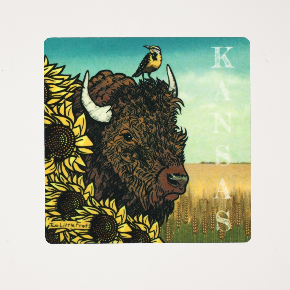 Kansas Bison Magnet