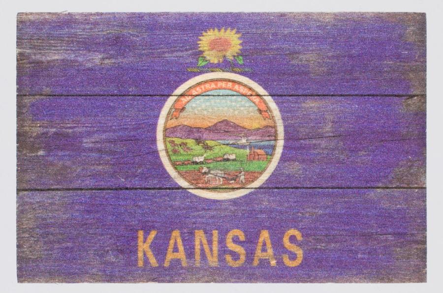 State Flag Magnet,52548 MAGNET