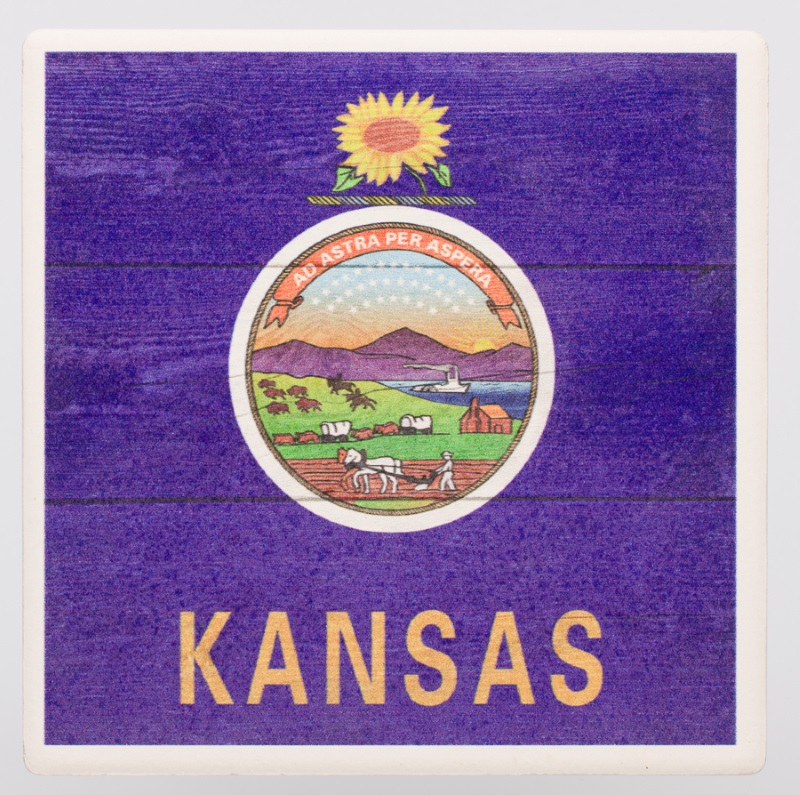 State Flag Coaster,52548 COASTER