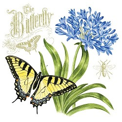 Agapanthus Flour Sack Towel (Butterfly)