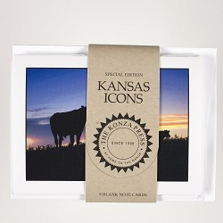 Cattle at Sunset Cards
